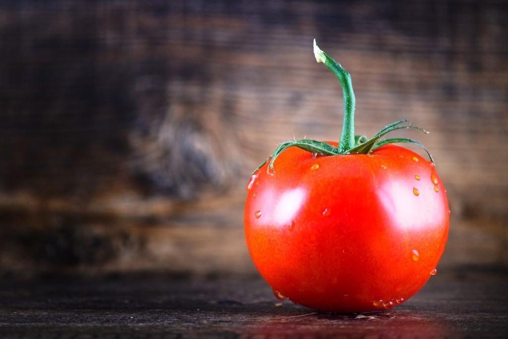 Koju vrstu rajčice odabrati?