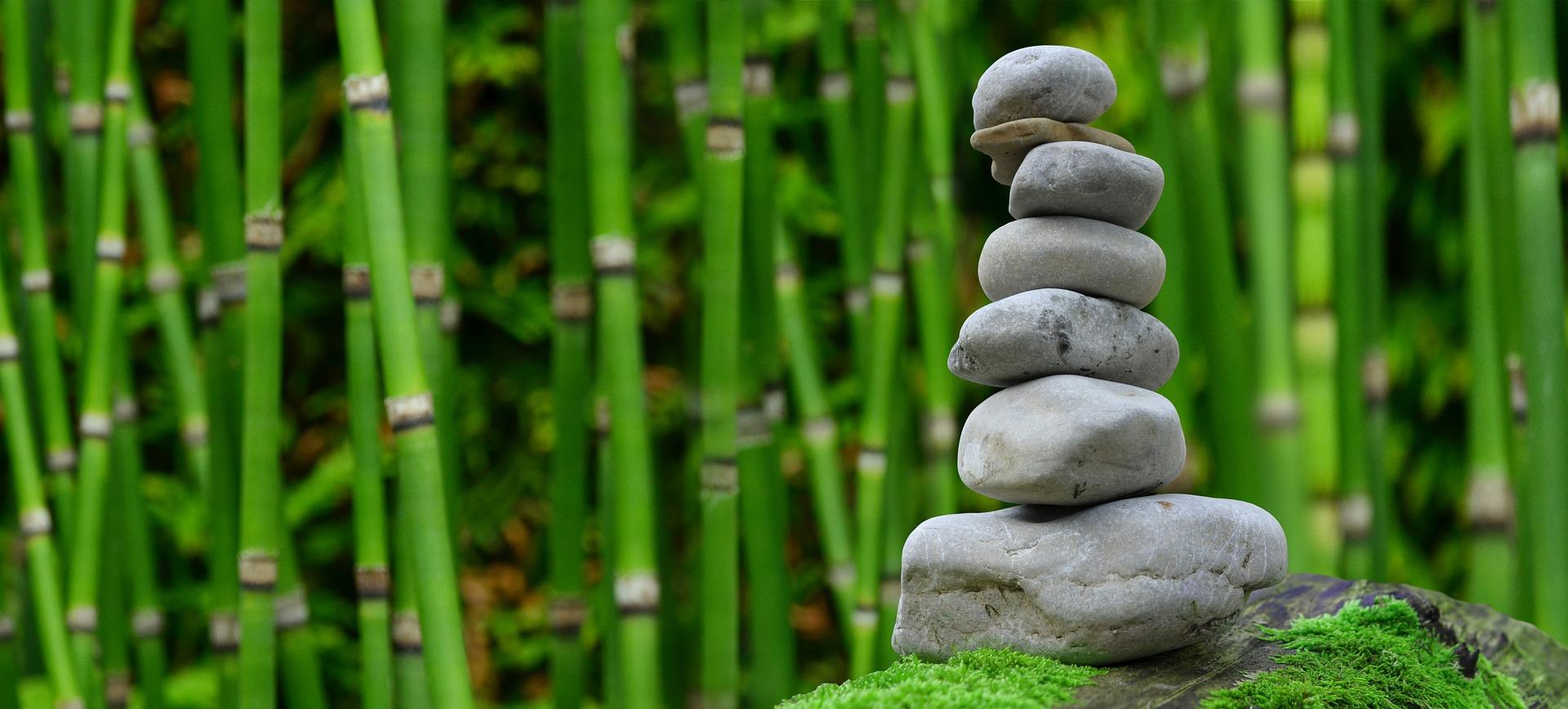 Sreća uz bambus koji zapravo uopće nije bambus